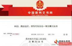 """国家发放5亿张三商法营业执照?这是""""国网""""传销骗局"""